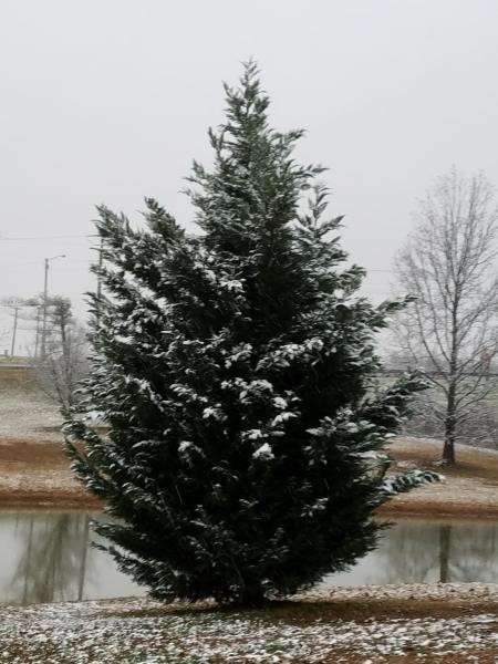 Snow at Tensilkut