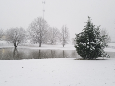 The Tensilkut pond surrounded by snow covered trees.